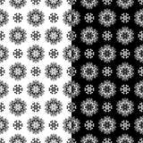 Modelli senza cuciture floreali in bianco e nero Insieme degli ambiti di provenienza Fotografie Stock