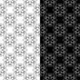 Modelli senza cuciture floreali in bianco e nero Insieme degli ambiti di provenienza Fotografia Stock Libera da Diritti