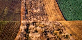 Modelli stupefacenti della banda sui campi ondeggiati dei colori verdi e marroni del sud della Moravia, di autunno Immagine Stock