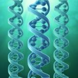 modello 3D di un filo del DNA Fotografia Stock