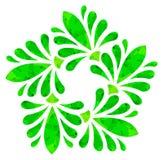 Modello acquerello - fiore astratto verde Immagine Stock