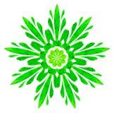 Modello acquerello - fiore astratto verde Fotografia Stock Libera da Diritti