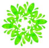 Modello acquerello - fiore astratto verde chiaro Immagini Stock Libere da Diritti