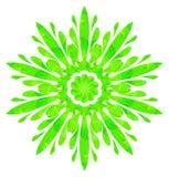 Modello acquerello - fiore astratto verde chiaro Fotografia Stock Libera da Diritti
