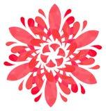 Modello acquerello - fiore dell'estratto di Rosa Fotografie Stock Libere da Diritti