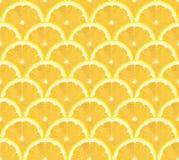 Modello affettato limone, fondo senza cuciture fotografie stock libere da diritti