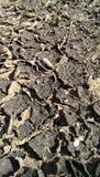 Modello al suolo della natura della terra della crepa della terra incrinata astratta della sporcizia Immagini Stock Libere da Diritti