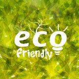 Modello alla moda per Eco amichevole Fotografia Stock