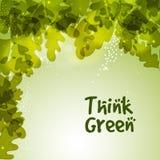 Modello alla moda per verde Think Fotografia Stock