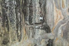 Modello astratto di marmo nero del fondo con l'alta risoluzione Fondo di lerciume o dell'annata di vecchia struttura di pietra na fotografia stock