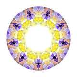 Modello astratto luminoso, mandala Fotografie Stock Libere da Diritti