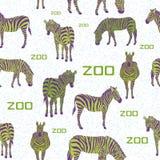 Modello bianco del fondo della zebra verde Immagine Stock Libera da Diritti