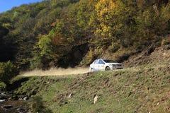 Modello bianco dell'automobile di Dacia Logan nel raduno Fotografia Stock