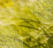 Modello bianco della mandala del pizzo sulla foto vaga del grano fotografie stock