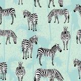 Modello blu del fondo della palma della zebra Immagini Stock