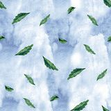 Modello botanico senza cuciture dell'acquerello Foglie, fondo delle erbe Pittura della mano Struttura dell'erba verde Fotografie Stock Libere da Diritti