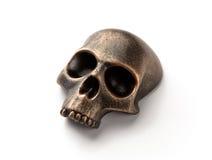 Modello Bronze del cranio Fotografie Stock