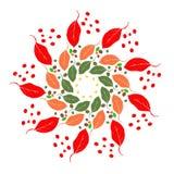 Modello circolare delle foglie Fotografie Stock