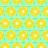 Modello con gli slises e le foglie del limone fotografia stock libera da diritti