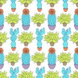 Modello con i cactus Fotografia Stock Libera da Diritti