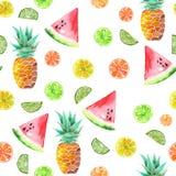 Modello con i frutti canditi dell'acquerello, l'ananas, la calce e l'anguria colorati Fotografie Stock Libere da Diritti