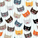 Modello con i gatti Fotografia Stock