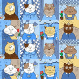 Modello con i gatti nelle finestre Fotografia Stock Libera da Diritti