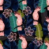 Modello con il pappagallo rosa illustrazione di stock