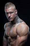 Modello con il tatuaggio Immagini Stock Libere da Diritti
