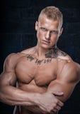 Modello con il tatuaggio Immagini Stock