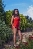 Modello con il vestito rosso Fotografia Stock Libera da Diritti
