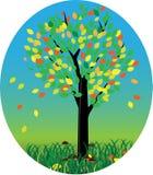 Modello con l'albero di autunno Immagine Stock