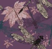 Modello con la foglia di acero e il dragonfly& x27; s Fotografie Stock Libere da Diritti
