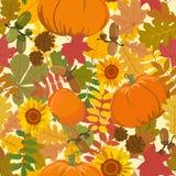 Modello con le foglie di autunno, la zucca, le ghiande ed il girasole Illustrazione di vettore Fotografia Stock