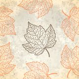 Modello con le foglie di autunno nel beige Fotografia Stock Libera da Diritti
