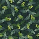 Modello con le foglie tropicali illustrazione vettoriale