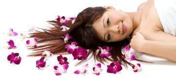 Modello con le orchidee Immagini Stock