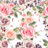 Modello con le rose e le bacche realistiche dell'acquerello Immagini Stock