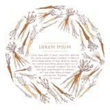 Modello d'annata del fondo con le carote delle verdure Corona del cerchio, posta quadrata per i media sociali illustrazione vettoriale