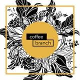 Modello d'avanguardia Il caffè si ramifica con le foglie, i fiori ed i chicchi di caffè naturali Vettore Fotografia Stock Libera da Diritti