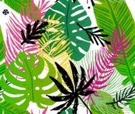 Modello d'avanguardia senza cuciture con le foglie di palma esotiche verdi su un fondo bianco Illustrazione botanica di vettore Fotografie Stock