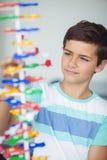 Modello d'esperimento della molecola dello scolaro attento in laboratorio Fotografie Stock Libere da Diritti