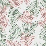 Modello dalle foglie di palma Fotografia Stock Libera da Diritti