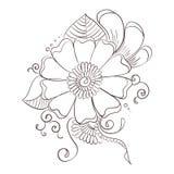 Modello decorativo del fiore Illustrazione Vettoriale
