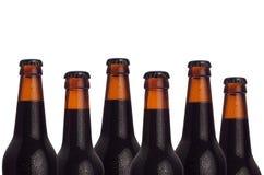 Modello decorativo delle bottiglie di birra di marrone sigillato con il portatore e delle gocce di acqua su fondo bianco fotografia stock