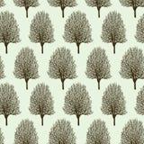 Modello degli alberi nella primavera Fotografie Stock Libere da Diritti