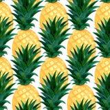 Modello degli ananas dell'acquerello Ripetizione della struttura con l'ananas realistico su fondo bianco Progettazione della cart illustrazione di stock