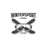 Modello degli sport invernali Fotografie Stock Libere da Diritti