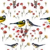 Modello degli uccelli dell'acquerello Fotografia Stock