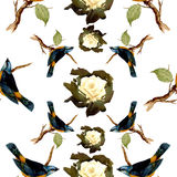 Modello degli uccelli dell'acquerello Immagine Stock